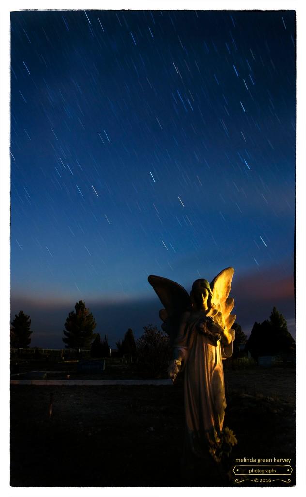 stars-fell-like-rain